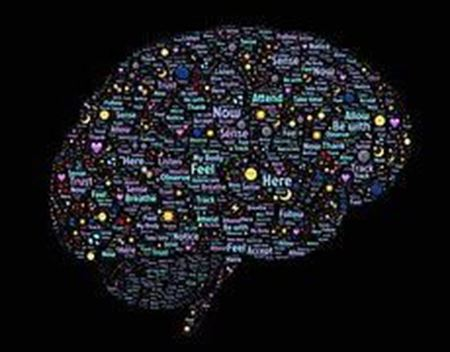 Picture for category Brain Science